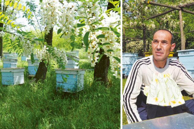 Imker Nureitin Nieziew aus Bulgarien überlässt seinen Bienen genügend Honig