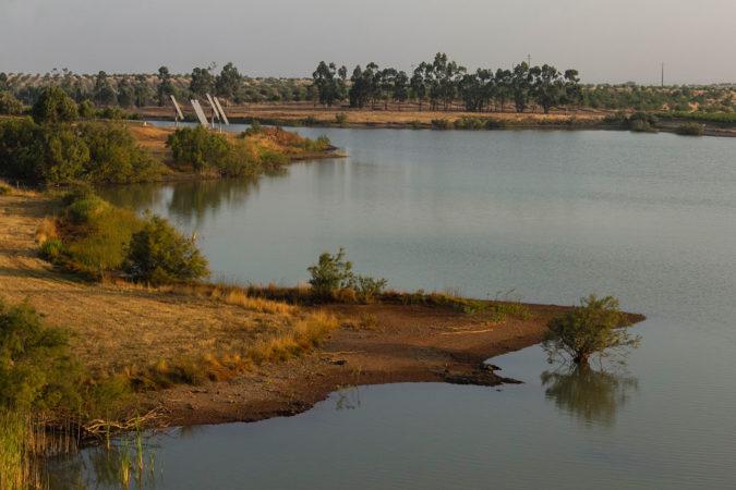Wasserretentionsteich auf dem Weingut Vale de Camelos