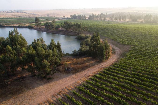 Weingut Vale de Camelos aus der Luftperspektive