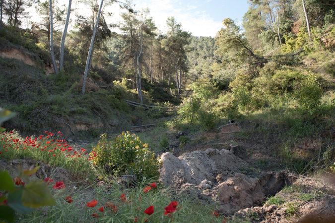 Retentionsbecken verhindern den Trockenheitsstress auf dem Weingut Pago Casa Gran