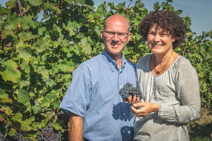 Ein gutes Weinjahr für Tobias und Ellen Zimmer auf dem Weingut Hirschhof