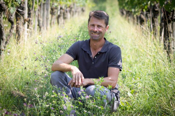 Bio-Winzer Roland Lenz spricht von einem erfreulichen Weinjahr
