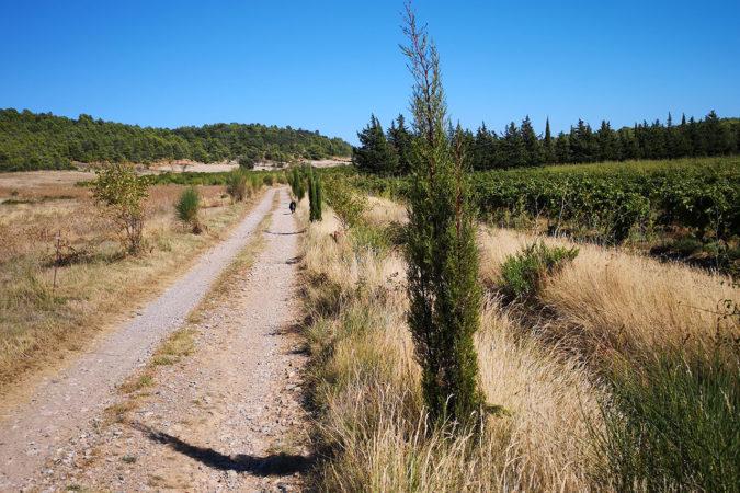 Anne und Jean Lignières pflanzen Bäume zur Förderung der Biodiversität