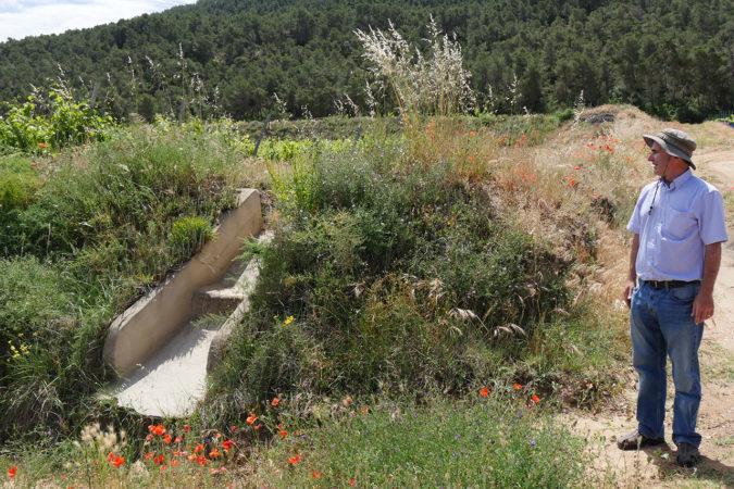Genügend Wasser dank Wassermanagment nach dem Konzept der Permakultur auf dem Weingut Pago Casa Gran