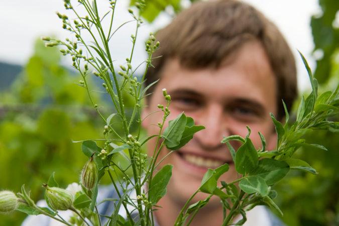 Andreas Harm, Biodiversitätswinzer 2021